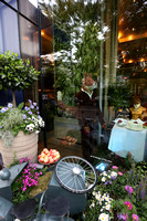 belgraviainbloom_008